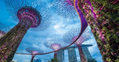 Сингапур переходит на блокчейн